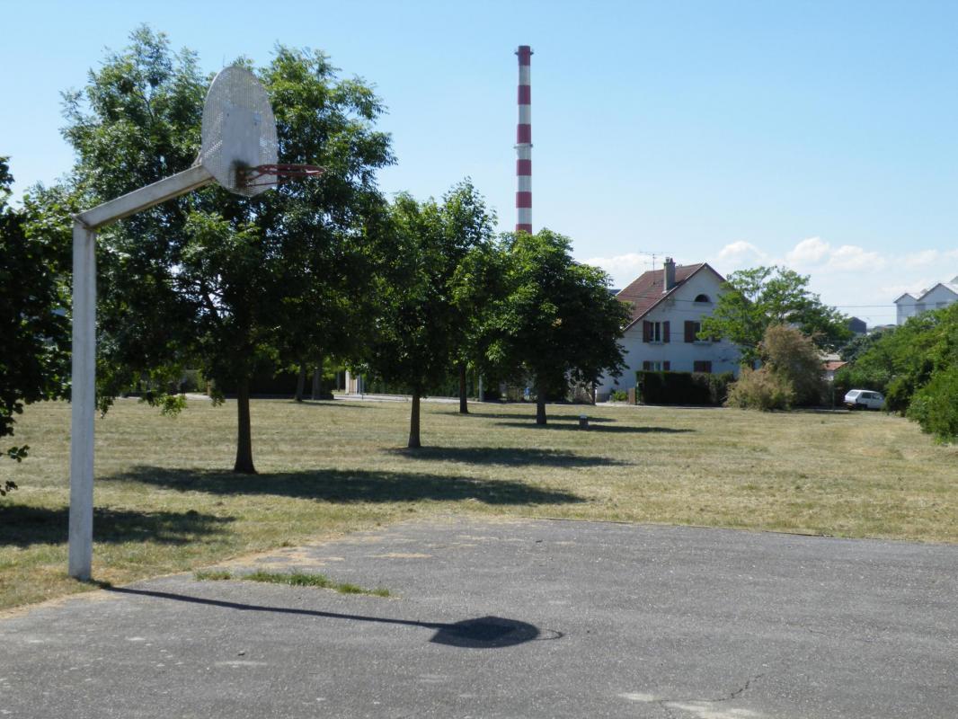 basket julie la madeleine